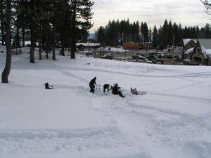 Wacky Winter Bowling Tahoe City Golf Course